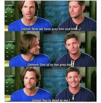 Memes, 🤖, and Grey Hair: Lared: Now we have grey hair and kid ..j  Uensen: One of us has grey ha  pared: You're dead to me jensenackles jaredpadalecki deanwincester samwinchester spn spnsam spncast spndean spn4ever spnfandom spnfamily spnaddict supernaturalshippers supernaturaltumblr supernatural supernaturalfandom supernatural supernaturalfans supernaturalcast supernaturalfandom supernaturalfamily