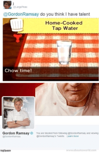 ebaumsworld: @LargePeas  @GordonRamsay do you think I have talent  Home-Cooked  Tap Water  Chow time!  Gordon Ramsay  @GordonRamsay  You are blocked from following @GordonRamsay and viewing  @GordonRamsay's Tweets.  Learn more  imgfip.com  www.ebaumsworld.com