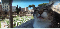 Google Street View at historical site in Rome.: Largo di Torre Argentina  Roundel Arts Photography  G  Street View- Ape 2017  Via di Torr  Argentina,  Google  Alta Google Street View at historical site in Rome.