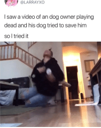 Good boy 😂: @LARRAYXO  I saw a video of an dog owner playing  dead and his dog tried to save him  so l tried it Good boy 😂