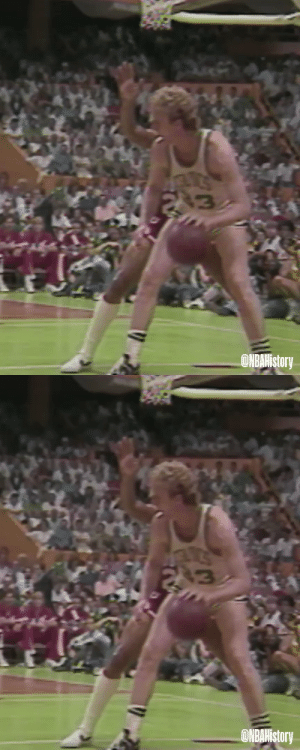Larry Bird was so smooth with it👀 https://t.co/O4k2sS1fsw: Larry Bird was so smooth with it👀 https://t.co/O4k2sS1fsw