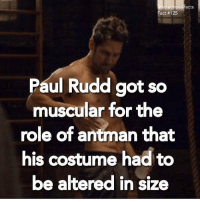 Memes, SpongeBob, and Hulk: larvelmoviefacts  Fact #125  Paul Rudd got so  muscular for the  role of antman that  his costume had to  be altered insi  ze marvelcomics marvel mcu ironman spiderman spidey hulk hercules thorragnarok planethulk thehulk markruffalo chrishemsworth civilwar captainamericacivilwar doctorstrange guardiansofthegalaxy guardiansofthegalaxyvol2 buckybarnes spidermanhomecoming tomholland benedictcumberbatch avengers spongebob avengersinfinitywar thanos blackpanther captainamerica agentsofshield ghostrider