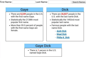 Dick, Search, and Irl: |Last Name:  First Name:  Search Names  Dick  Gaye  There are 8,249 people in the U.S.  with the first name Gaye.  There are 26,827 people in the  U.S. with the last name Dick.  Statistically the 1492nd most  popular last name.  Famous people with the last  name Dick:  Statistically the 2138th most  popular first name.  More than 99.9 percent of people  with the first name Gaye are  female.  Andy Dick  Nigel Dick  Philip K. Dick  Gaye Dick  There is 1 person in the U.S.  named Gaye Dick. Me_irl