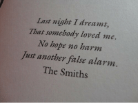 No Harm: Last night I dreamt,  That somebody loved me.  No hope no harm  Just another false alarm.  The Smiths