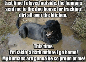 Memes, Time, and Proud: Last timeIplayedoutside the humans  sent me to the doghouse for tracking  dirtallover the kitchen.  This time,  Imtakin'abathbeforelgohome!  My humans are gonnabe so proud of me!