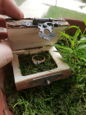 Her, Box, and Wanted: Last week I finished a ring box for getting engaged. My (now fiancee) loves hiking and the outdoors. I told her I wanted to get into woodworking, so I did.