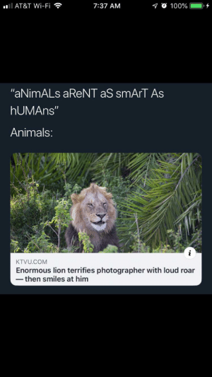 "HuMaNs ArE sMaRtEr ThAn AnImAlS: lAT&T Wi-Fi  10 100%  7:37 AM  ""aNimALs aReNT aS smArT As  hUMAns""  Animals:  KTVU.COM  Enormous lion terrifies photographer with loud roar  then smiles at him HuMaNs ArE sMaRtEr ThAn AnImAlS"