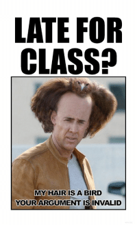 Memes, Nicolas Cage, and Teacher: LATE FOR  CLASS?  MY HAIR IS A BIRD  YOURARGUMENT ISINVALID  0 Late for class? My hair is a bird. Your argument is invalid. {I can't stop laughing at Nicolas Cage.} Teacher Memes / Classroom memes