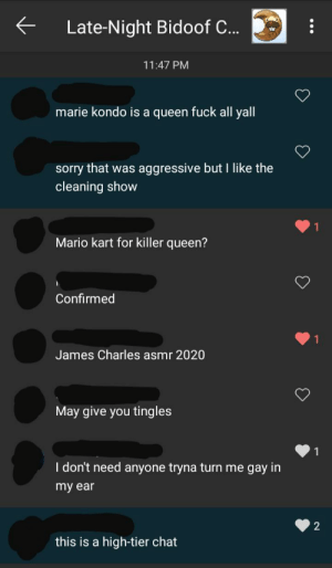 me_irl: Late-Night Bidoof C...  11:47 PM  marie kondo is a queen fuck all yall  sorry that was aggressive but I like the  cleaning show  Mario kart for killer queen?  Confirmed  James Charles asmr 2020  May give you tingles  I don't need anyone tryna turn me gay in  my ear  this is a high-tier chat me_irl