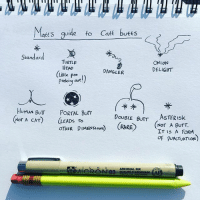 Butt, Head, and Memes: lates guide to Cate butts  Standard  TURTLE  ONION  HEAD  DELIGT  DANGLER  Little Poo  Peeking out  HUMAN BuTT PORTAL Burr  DoueLE BUTT ASTER Isk  NOT A CAT  LEADS To  Nor A BUTT.  OTHER DIMENSIONS  (RARE  IT IS A FORM  OF PUNCTUATION) Took some notes for u.