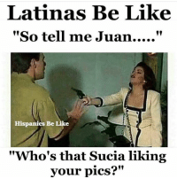 "Be Like, Memes, and 🤖: Latinas Be Like  Hispanics Be Like  ""Who's that Sucia liking  vour pics?"" LatinaSaturday latinasaturday latinasdoitbettah mrlatinalover LatinasBeLike beinglatina beinglatina latinasdoitbettatho spanishgirlsaturday saturdaynightmamacita LATINASoverEverything LatinaShit LatinaProblems LatinaSaturday beinglatinas spanishgirlweekend beinglatina👍 beinglatina beinglatina💁 beinglatinarocks beinglatina💞 beinglatinaisablessing spanishgirlsaturday"
