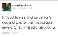 "Blackpeopletwitter, Smh, and Trap: Latrell Jackson  @SteadyMobbin300  I'm bout to steal a white person's  dog and wait for them to put up a  reward. Smh, I'm tired of struggling  5/23/16, 17:47 <p>""Yeah, I found him behind the trap"" (via /r/BlackPeopleTwitter)</p>"