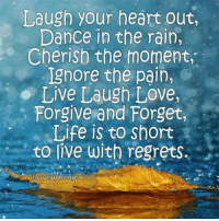 #jussayin: Laugh your heart out,  Dance in the rain,  Cherish the moment,  Ignore the pain,  Live Laugh Love,  Forgive and Forget,  Life is to Short  to live with regrets.  MEDIAWEBAPPS COM #jussayin