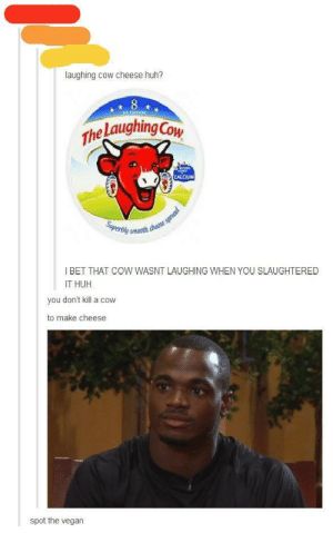 Silly person, you don't kill the cow to make cheeseomg-humor.tumblr.com: laughing cow cheese huh?  The Laughing Cow  CALCIUM  katse spread  smooth chesse  Superbly  I BET THAT COW WASNT LAUGHING WHEN YOU SLAUGHTERED  IT HUH  you don't kill a cow  to make cheese  spot the vegan Silly person, you don't kill the cow to make cheeseomg-humor.tumblr.com