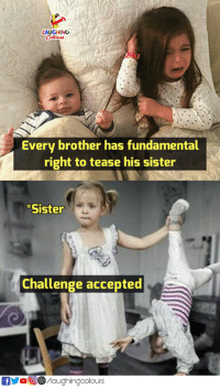 brother: LAUGHING  Every brother has fundamental  right to tease his sister  Sister  Challenge accepted