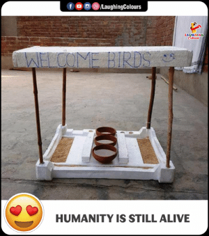 Alive, Humanity, and Indianpeoplefacebook: LAUGHING  HUMANITY IS STILL ALIVE