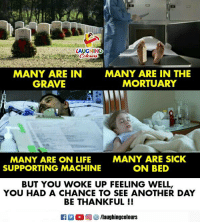 On Bed: LAUGHING  MANY ARE IN  GRAVE  MANY ARE IN THE  MORTUARY  MANY ARE ON LIFE  SUPPORTING MACHINE  MANY ARE SICK  ON BED  BUT YOU WOKE UP FEELING WELL,  YOU HAD A CHANCE TO SEE ANOTHER DAY  BE THANKFUL !!