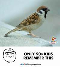 Kids, Indianpeoplefacebook, and 90's: LAUGHING  ONLY 90s KIDS  REMEMBER THIS  000318/laughingcolours