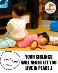 Sibling Rivalry Be Like.. :P: LAUGHING  YOUR SIBLINGS  WILL NEVER LET YOU  LIVE IN PEACE! Sibling Rivalry Be Like.. :P