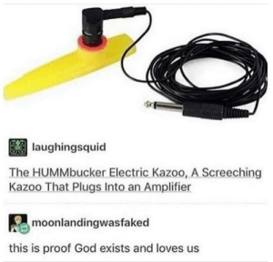 novelty-gift-ideas:Electric Kazoo: laughingsquid  The HUMMbucker Electric Kazoo, A Screeching  Kazoo That Plugs Into an Amplifier  moonlandingwasfaked  this is proof God exists and loves us novelty-gift-ideas:Electric Kazoo