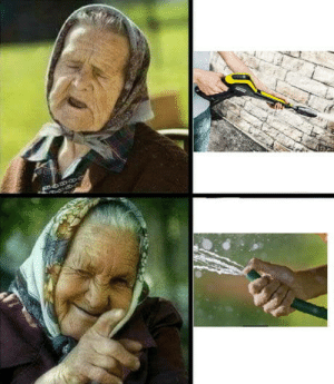 Club, Tumblr, and Blog: laughoutloud-club:  Babushka approves