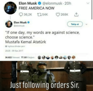 laughoutloud-club:  Sorry about this, Sir Musk.: laughoutloud-club:  Sorry about this, Sir Musk.