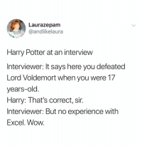 Harry Potter, Wow, and Excel: Laurazepam  andlikelaura  Harry Potter at an interview  Interviewer: It says here you defeated  Lord Voldemort when you were 17  years-old  Harry: That's correct, sir.  Interviewer: But no experience with  Excel. Wow. (@andlikelaura)