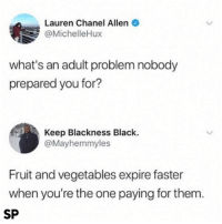 Black, Chanel, and Truth: Lauren Chanel Allen  @MichelleHux  what's an adult problem nobody  prepared you for?  Keep Blackness Black.  @Mayhemmyles  Fruit and vegetables expire faster  when you're the one paying for them.  SP Truth 😂