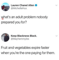 Omg, facts: Lauren Chanel Allen  @MichelleHux  what's an adult problem nobody  prepared you for?  Keep Blackness Black.  @Mayhemmyles  Fruit and vegetables expire faster  when you're the one paying for them Omg, facts