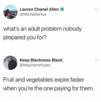 Black, Chanel, and Girl Memes: Lauren Chanel Allen  @MichelleHux  what's an adult problem nobody  prepared you for?  Keep Blackness Black.  @Mayhemmyles  Fruit and vegetables expire faster  when you're the one paying for them. Should I throw these mixed greens out now or wait 2 week's? @dietstartstomorrow
