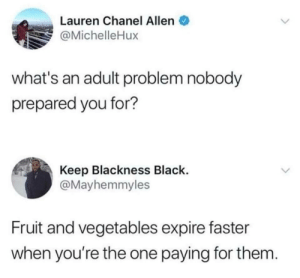 Black, Chanel, and Milk: Lauren Chanel Allen  @MichelleHux  what's an adult problem nobody  prepared you for?  Keep Blackness Black.  @Mayhemmyles  Fruit and vegetables expire faster  when you're the one paying for them. Don't forget about milk