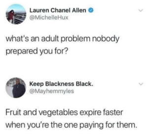 Don't forget about milk: Lauren Chanel Allen  @MichelleHux  what's an adult problem nobody  prepared you for?  Keep Blackness Black.  @Mayhemmyles  Fruit and vegetables expire faster  when you're the one paying for them. Don't forget about milk