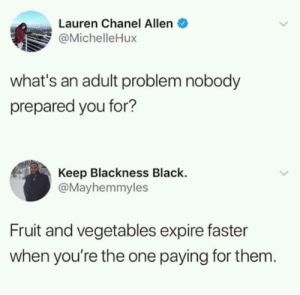 Memes, Black, and Chanel: Lauren Chanel Allen  @MichelleHux  what's an adult problem nobody  prepared you for?  Keep Blackness Black.  @Mayhemmyles  Fruit and vegetables expire faster  when you're the one paying for them An adult problem that I aint prepared for via /r/memes https://ift.tt/2Nfdrca