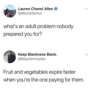 Black, Chanel, and Cheese: Lauren Chanel Allen  @MichelleHux  what's an adult problem nobody  prepared you for?  Keep Blackness Black.  @Mayhemmyles  Fruit and vegetables expire faster  when you're the one paying for them Don't get me started on the price of cheese