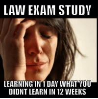 Credit: Zain Karmile: LAW EXAM STUDY  LEARNING IN 1 DAY WHAT YOU  DIDNT LEARN IN 12 WEEKS Credit: Zain Karmile