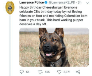 This very good boy is celebrating his birthday today: Lawrence Police @LawrenceKS PD 3h v  Happy Birthday Cheeseburger! Everyone  celebrate CB's birthday today by not fleeing  felonies on foot and not hiding Colombian bam  bam in your trunk. This hard working pupper  deserves a day off  56  565 3,371 This very good boy is celebrating his birthday today