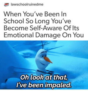 Follow us @studentlifeproblems: lawschoolruinedme  When You've Been In  School So Long You've  Become Self-Aware Of lts  Emotional Damage On You  Oh look at that  I've been impaled Follow us @studentlifeproblems