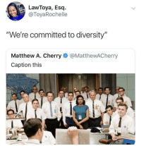 "Blackpeopletwitter, Diversity, and Tea: LawToya, Esq.-  @ToyaRochelle  ""We're committed to diversity""  Matthew A. Cherry@MatthewACherry  Caption this TEA (via /r/BlackPeopleTwitter)"