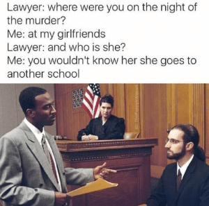 Dank, Lawyer, and Memes: Lawyer: where were you on the night of  the murder?  Me: at my girlfriends  Lawyer: and who is she?  Me: you wouldn't know her she goes to  another school  IG: TheFunnylntrovert You don't know her… by throwaway195281 FOLLOW 4 MORE MEMES.