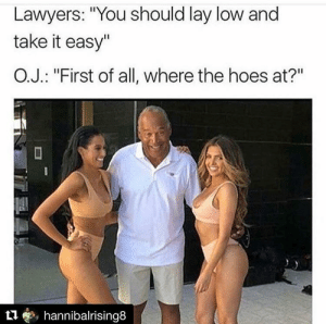 """Hoes, Lawyers, and The Hoes: Lawyers: """"You should lay low and  take it easy""""  O.J.: """"First of all, where the hoes at?""""  t1, hannibalrising8"""