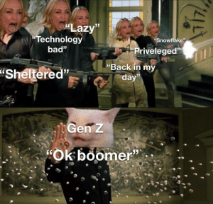 "srsfunny:  i love this new format: ""Lazy""  ""Technology  ""Snowflake""  bad""  ""Priveleged""  ""Back in my  ""Sheltered""  day""  Gen z  ""Ok boomer"" srsfunny:  i love this new format"