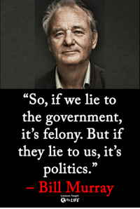 Life, Memes, and Politics: LC  the government,  it's felonv. But if  they lie to us, it's  politics.  Bill Murray  9)  Lessons Taught  By LIFE <3