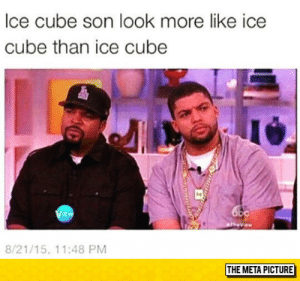lolzandtrollz:  True Doppelganger: lce cube son look more like ice  cube than ice cube  i4  EW  8/21/15, 11:48 PM  THE META PICTURE lolzandtrollz:  True Doppelganger