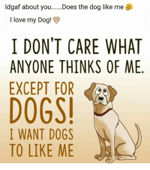 Love My Dog Meme. 25 best memes about dog i love you dog i love you ...: ldgaf about you  I love my Dog!  Does the dog like me  I DON'T CARE WHAT  ANYONE THINKS OF ME.  EXCEPT FOR  DOGS  I WANT DOGS  TO LIKE ME Love My Dog Meme. 25 best memes about dog i love you dog i love you ...