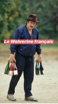 Wolverine, French, and Francais: Le Wolverine francais The French Wolverine