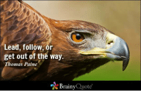 Lead, follow, or get out of the way. - Thomas Paine: Lead, follow, or  get out of the way.  Thomas Paine  Brainy  Quote Lead, follow, or get out of the way. - Thomas Paine