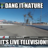 Yeah... This happened at Las Vegas... And seriously bird, like, really? Sorry for the lack of memes - off weekends are tough, and with spring break, I got very very distracted lol! Memes are back up and running now though! nascar racing race nature really bird crap lol funny nascarmemes kevinharvick harvick likeitup follow followme: LEADER  22 LC  48 JC  KEVIN HARVICK  @nascar memes  IT'S LIVE TELEVISION! Yeah... This happened at Las Vegas... And seriously bird, like, really? Sorry for the lack of memes - off weekends are tough, and with spring break, I got very very distracted lol! Memes are back up and running now though! nascar racing race nature really bird crap lol funny nascarmemes kevinharvick harvick likeitup follow followme
