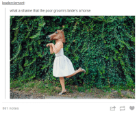 grooms bride: leader clemont  what a shame that the poor groom's bride's a horse  961 notes