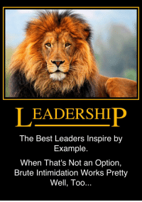 Real Leadership: LEADERSHIP  The Best Leaders Inspire by  Example  When That's Not an Option,  Brute Intimidation Works Pretty  Well, Too Real Leadership