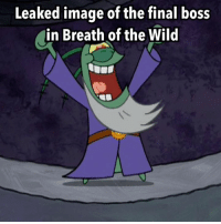 You're welcome (OC) ~Majora: Leaked image of the final boss  in Breath of the Wild You're welcome (OC) ~Majora